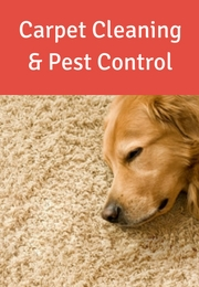 Carpet Cleaning & Pest Control